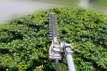 Scenic Lawn Care Services Affordable and local lawn care
